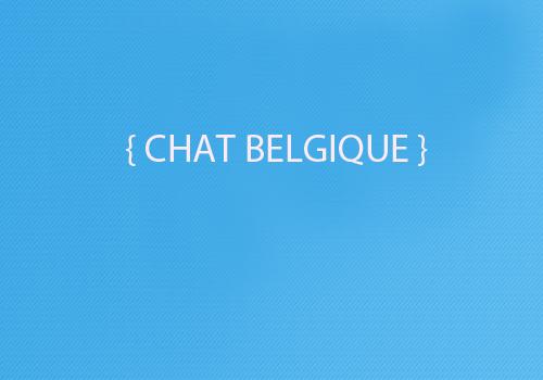 Chat rencontre belgique
